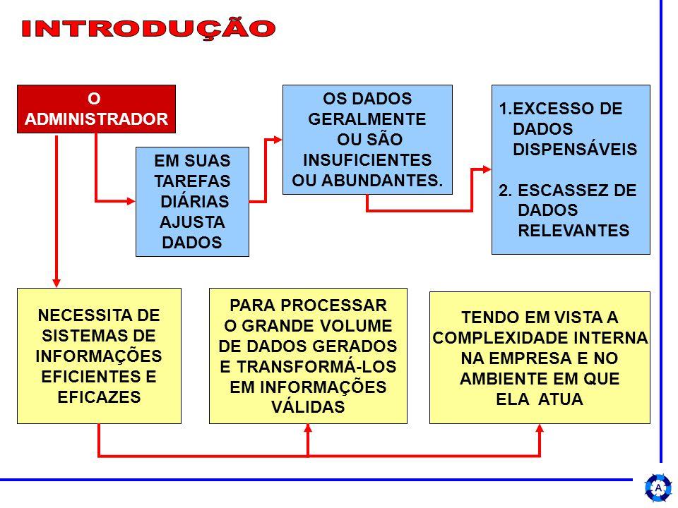INTRODUÇÃO O ADMINISTRADOR OS DADOS GERALMENTE OU SÃO INSUFICIENTES