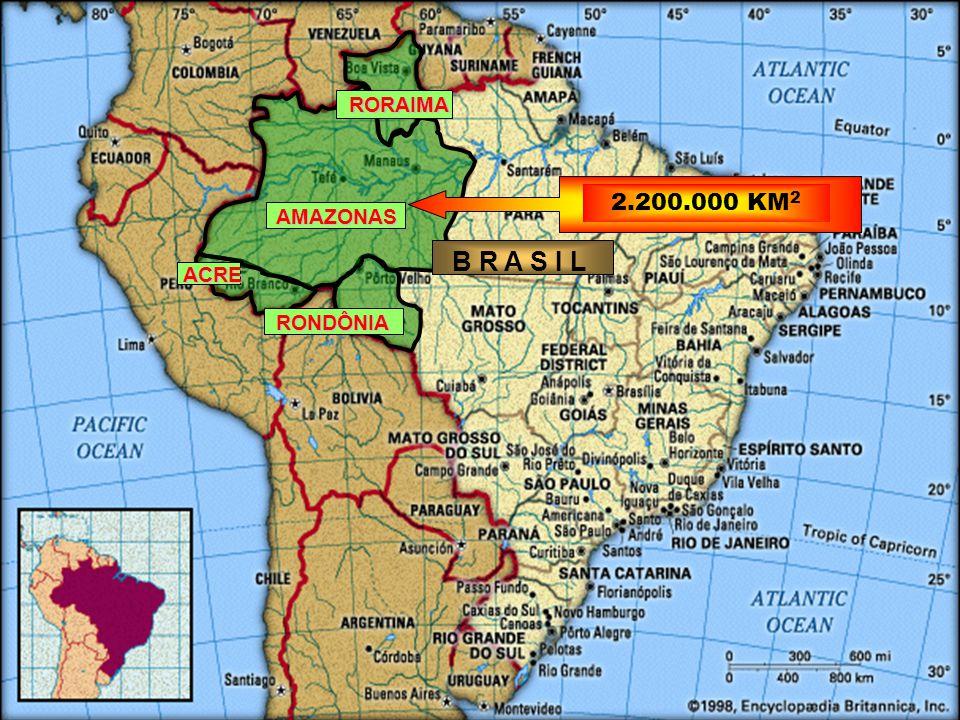 RORAIMA 2.200.000 KM2 AMAZONAS B R A S I L ACRE RONDÔNIA
