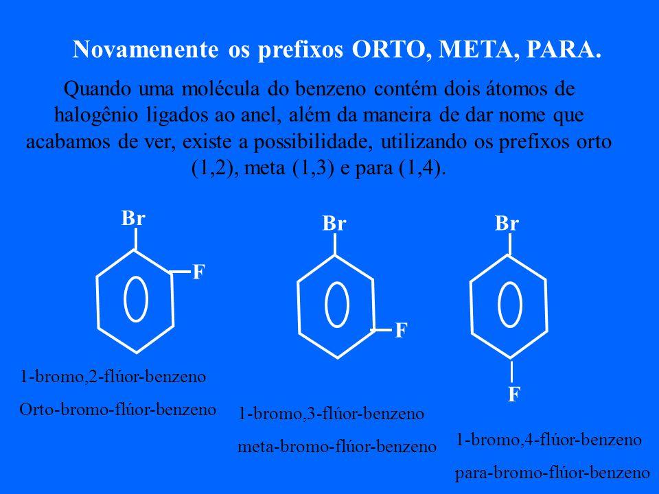 Novamenente os prefixos ORTO, META, PARA.