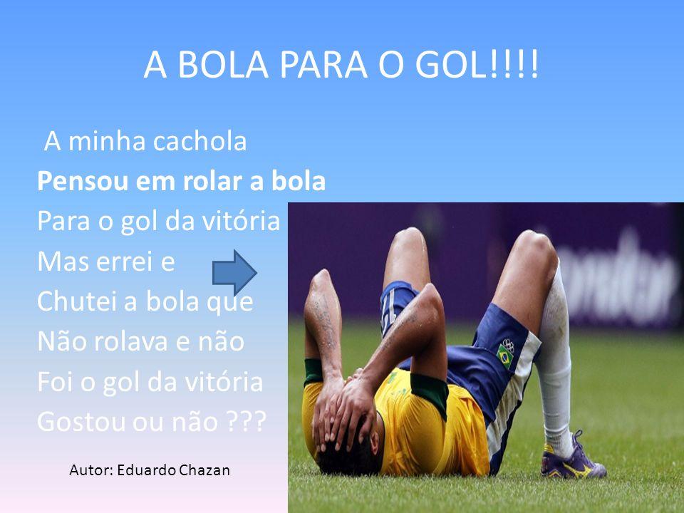 A BOLA PARA O GOL!!!!