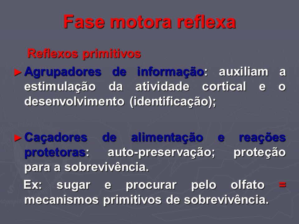 Fase motora reflexa Reflexos primitivos