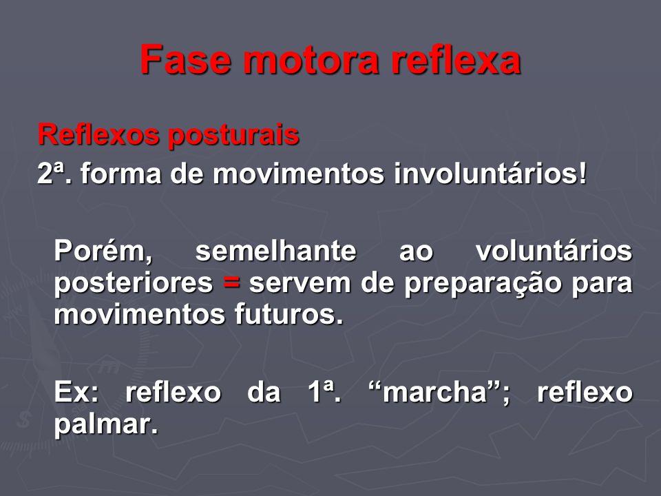 Fase motora reflexa Reflexos posturais