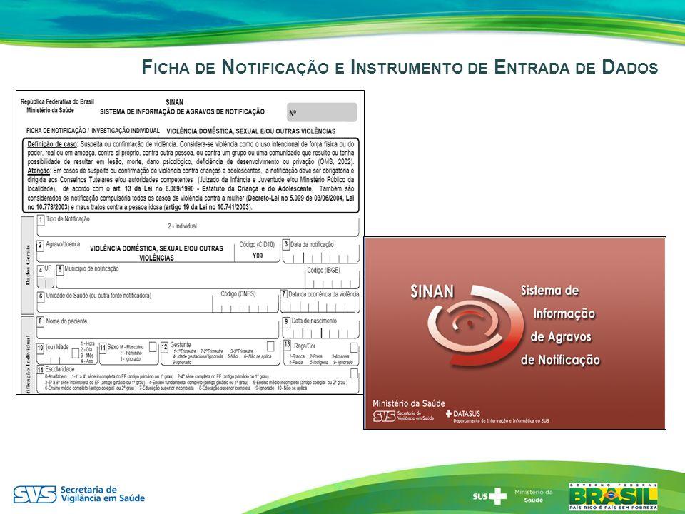 Ficha de Notificação e Instrumento de Entrada de Dados