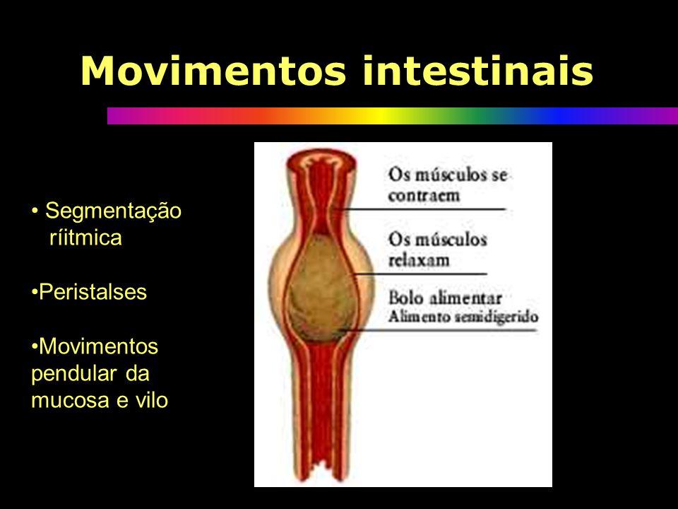 Movimentos intestinais