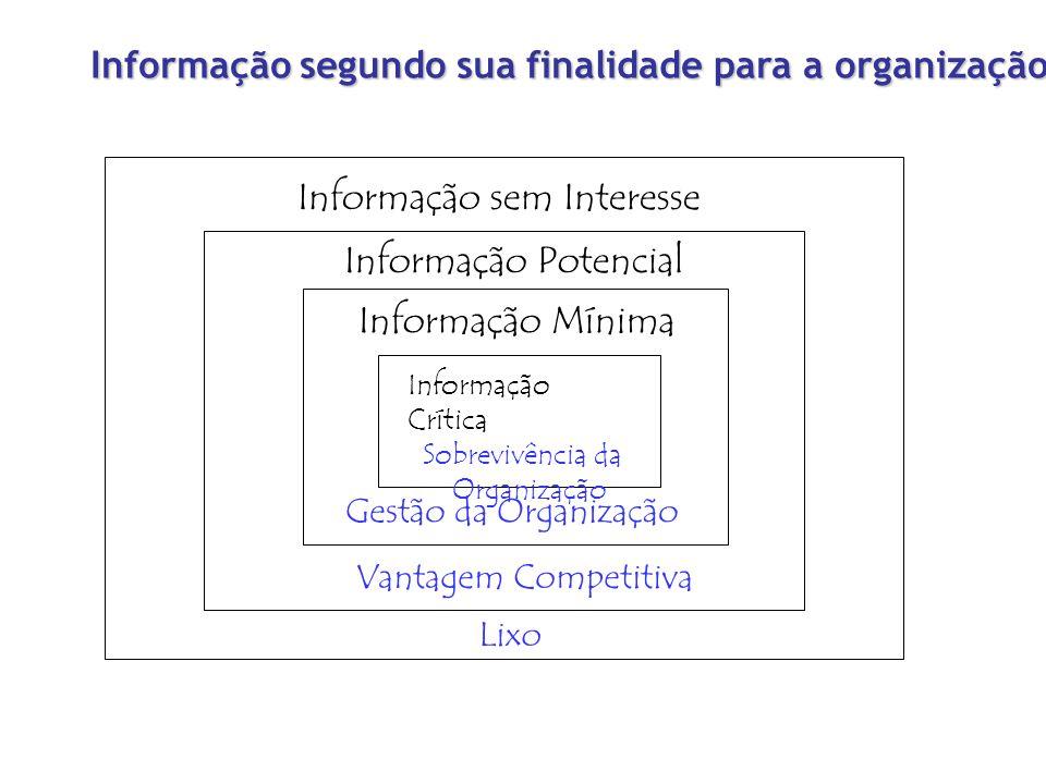 Informação segundo sua finalidade para a organização
