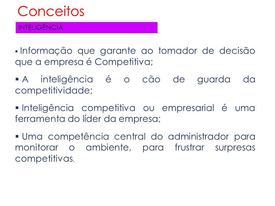 Conceitos A inteligência é o cão de guarda da competitividade;