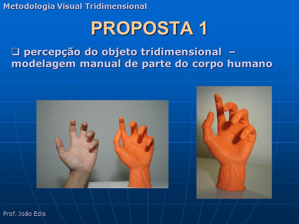 Metodologia Visual Tridimensional
