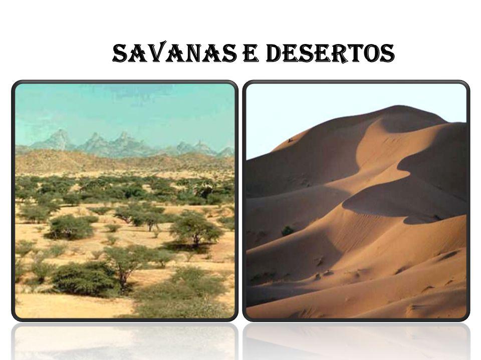SAVANAS E DESERTOS