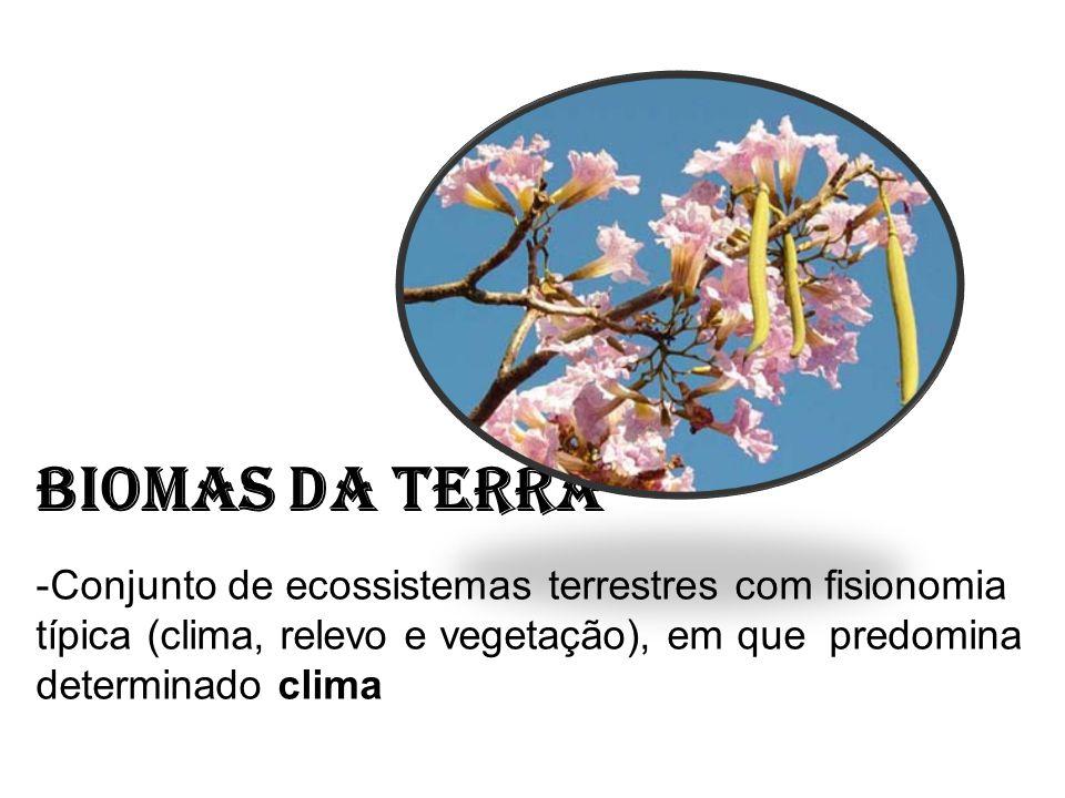Biomas da Terra Conjunto de ecossistemas terrestres com fisionomia típica (clima, relevo e vegetação), em que predomina determinado clima.