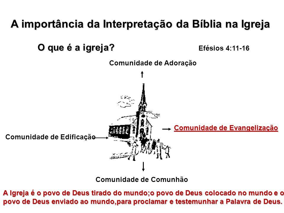 A importância da Interpretação da Bíblia na Igreja