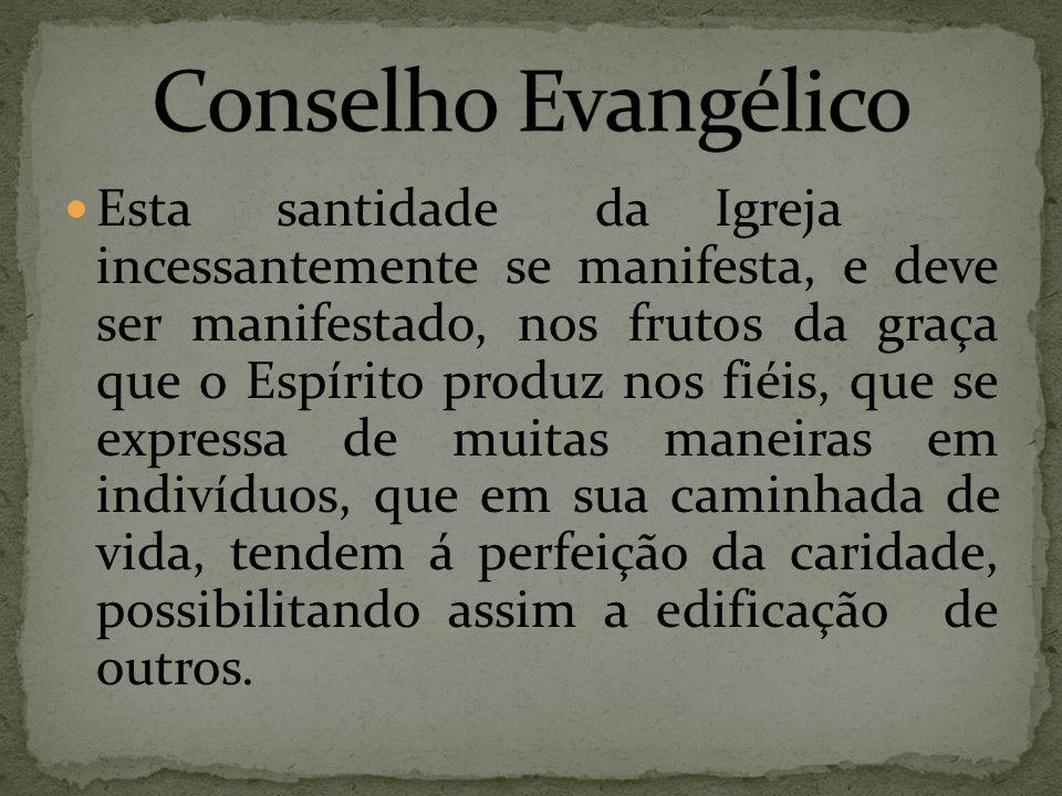 Conselho Evangélico