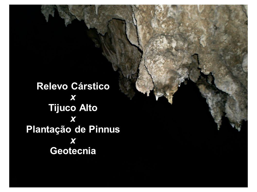 Relevo Cárstico x Tijuco Alto Plantação de Pinnus Geotecnia