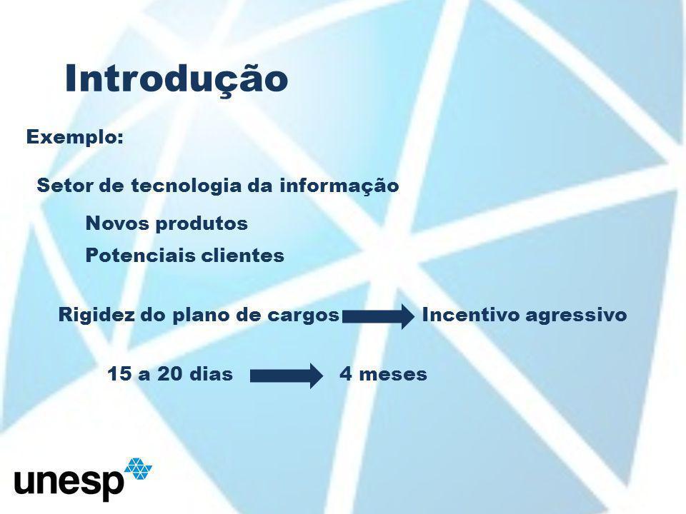 Introdução Exemplo: Setor de tecnologia da informação Novos produtos