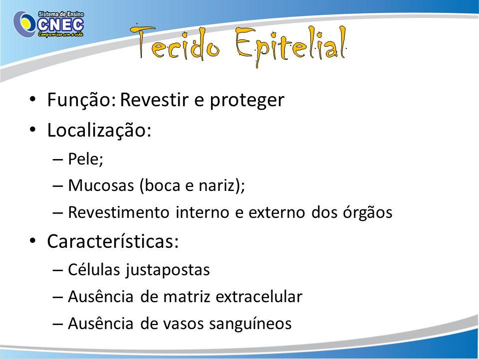 Tecido Epitelial Função: Revestir e proteger Localização: