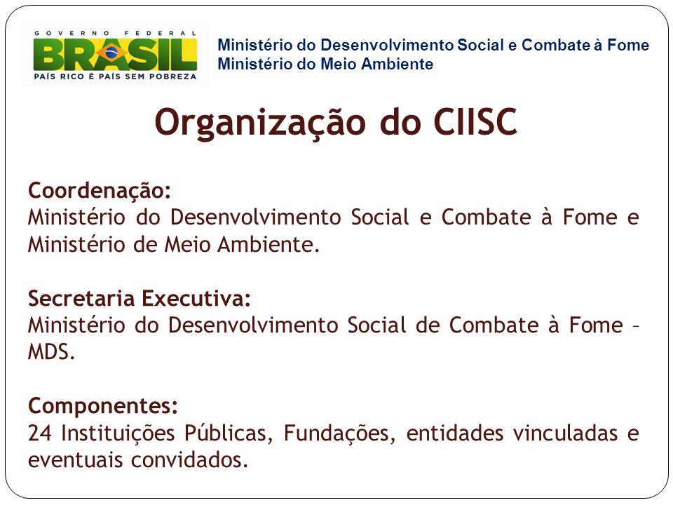 Organização do CIISC Coordenação: