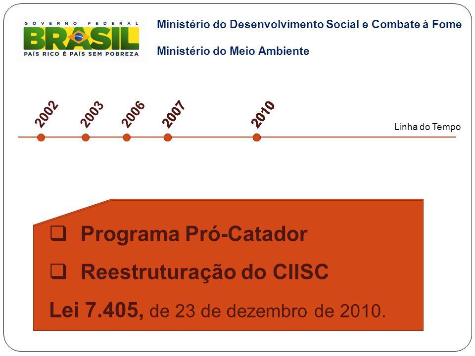Reestruturação do CIISC Lei 7.405, de 23 de dezembro de 2010.