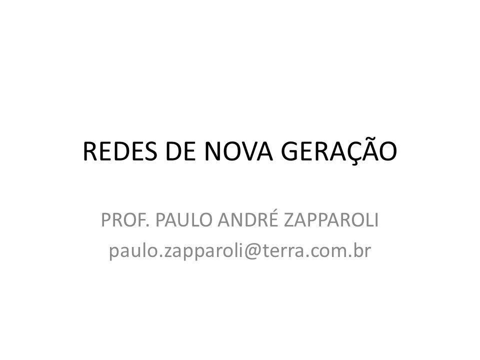 PROF. PAULO ANDRÉ ZAPPAROLI paulo.zapparoli@terra.com.br