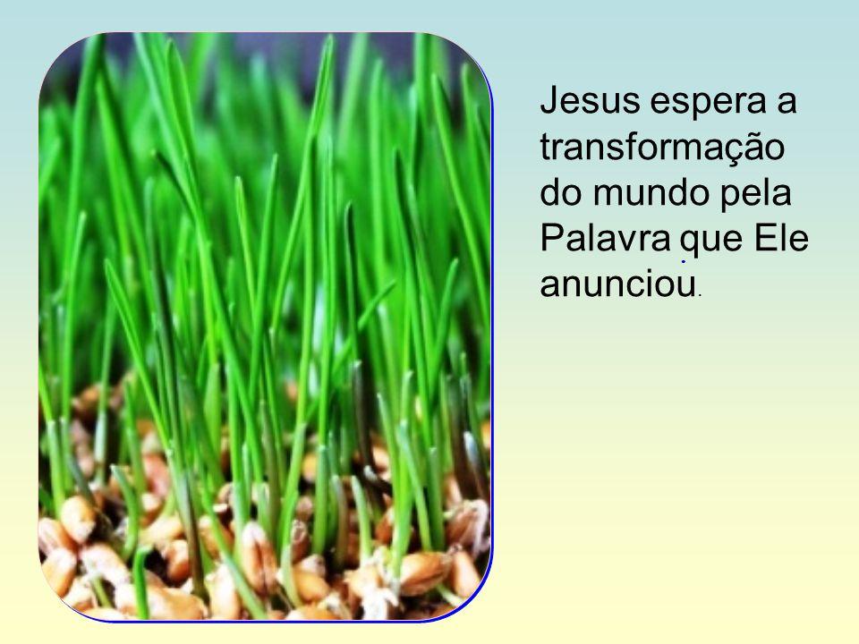Jesus espera a transformação do mundo pela Palavra que Ele anunciou.