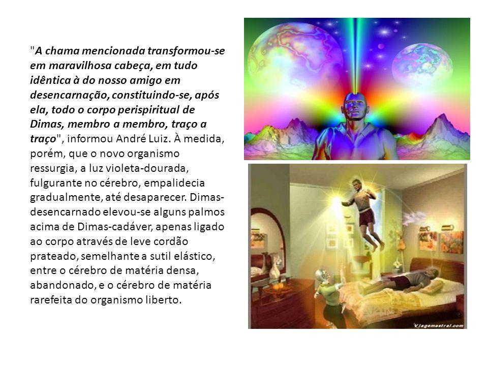 A chama mencionada transformou-se em maravilhosa cabeça, em tudo idêntica à do nosso amigo em desencarnação, constituindo-se, após ela, todo o corpo perispiritual de Dimas, membro a membro, traço a traço , informou André Luiz.