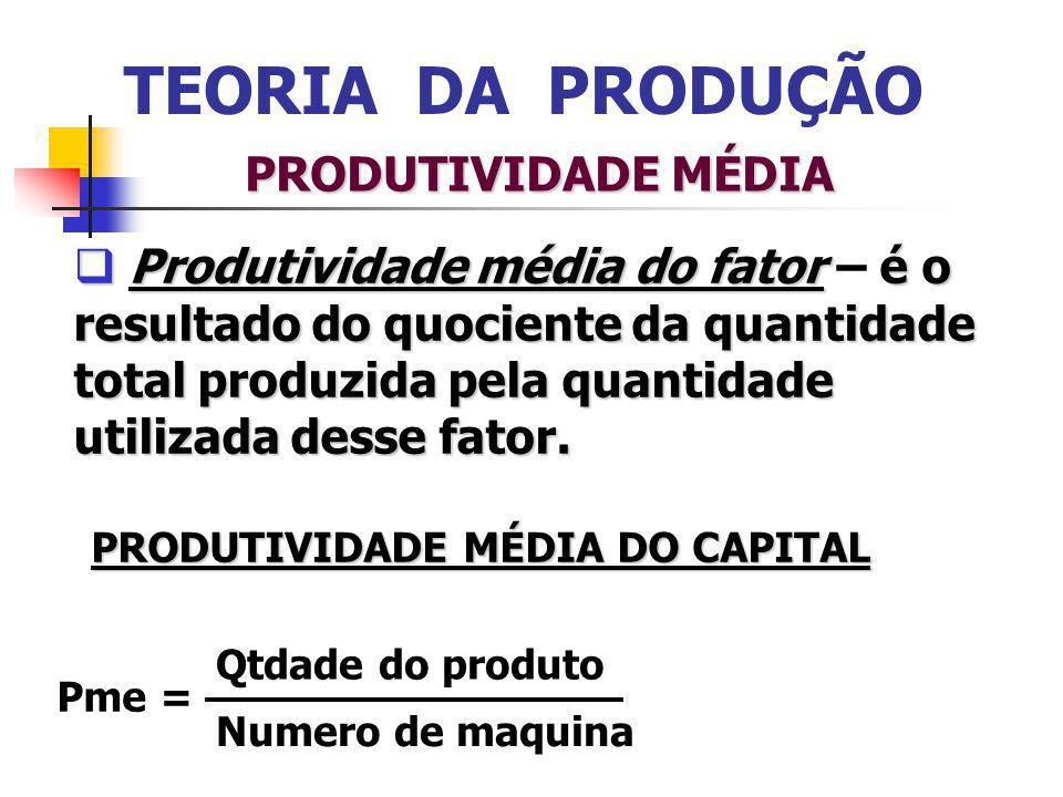 PRODUTIVIDADE MÉDIA DO CAPITAL