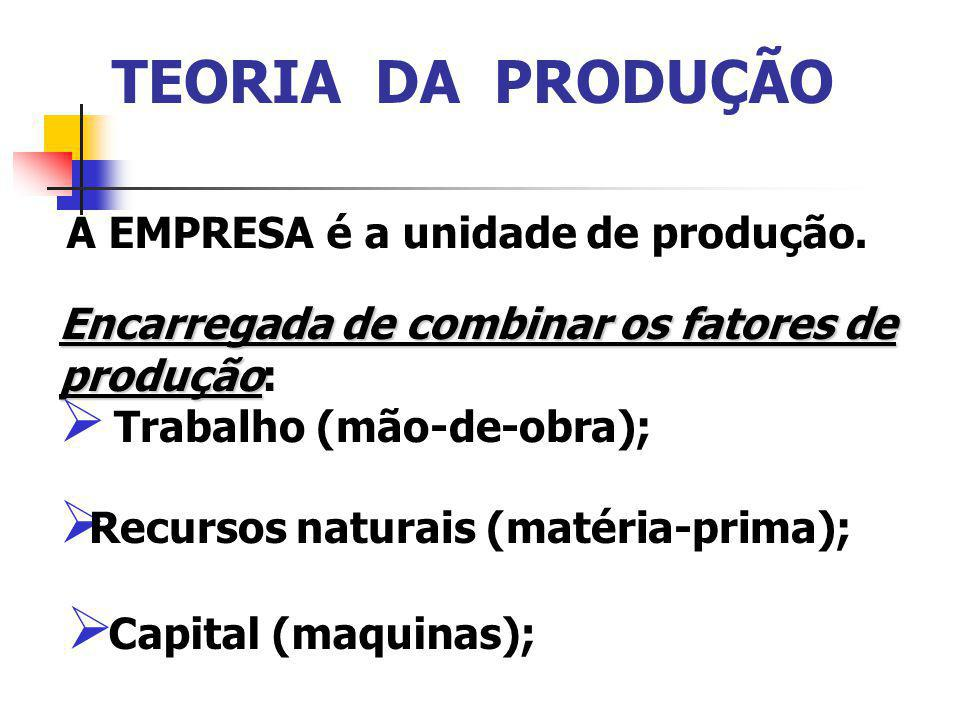 TEORIA DA PRODUÇÃO A EMPRESA é a unidade de produção.