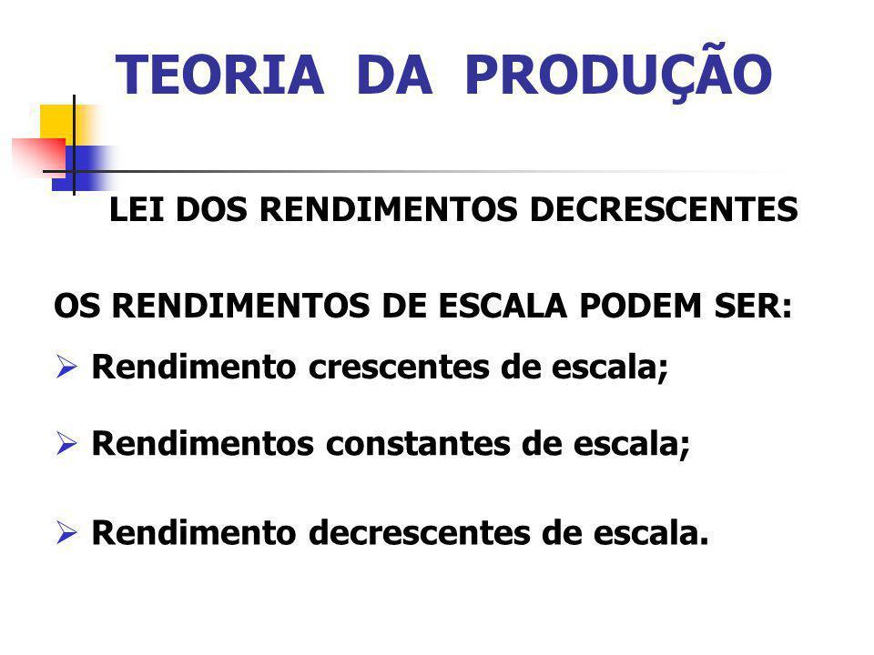 TEORIA DA PRODUÇÃO LEI DOS RENDIMENTOS DECRESCENTES