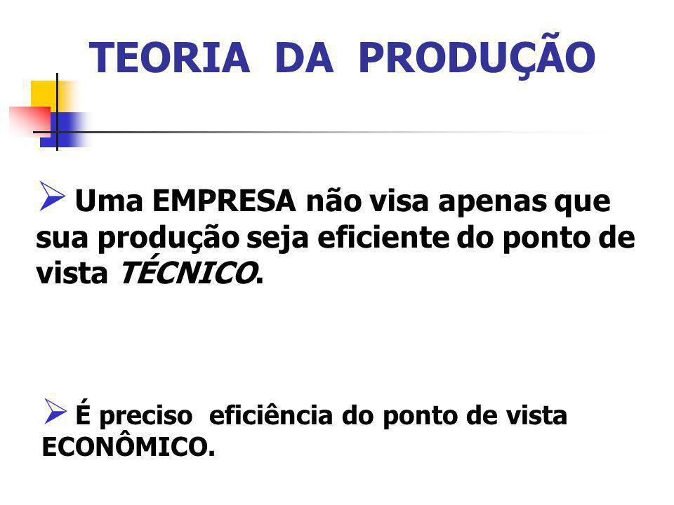 TEORIA DA PRODUÇÃO Uma EMPRESA não visa apenas que sua produção seja eficiente do ponto de vista TÉCNICO.