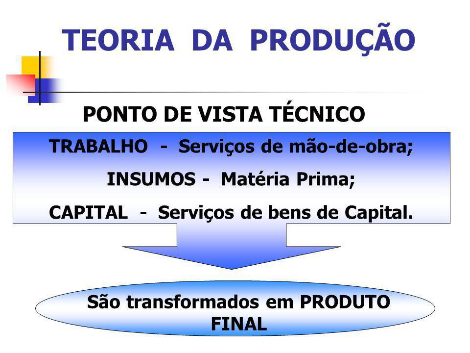 TEORIA DA PRODUÇÃO PONTO DE VISTA TÉCNICO