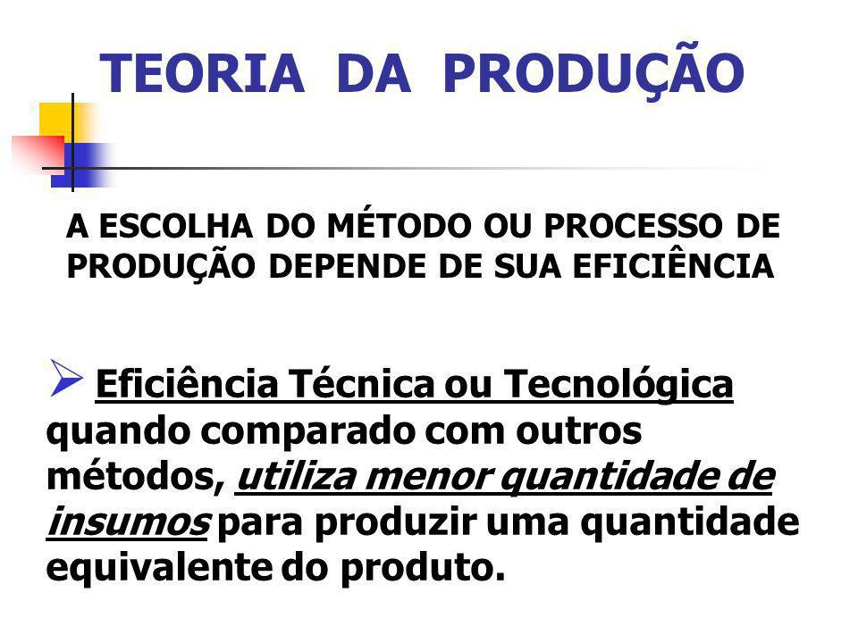 TEORIA DA PRODUÇÃO A ESCOLHA DO MÉTODO OU PROCESSO DE PRODUÇÃO DEPENDE DE SUA EFICIÊNCIA.