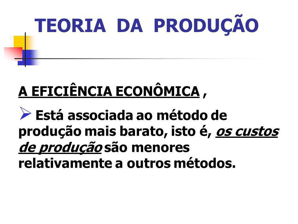 TEORIA DA PRODUÇÃO A EFICIÊNCIA ECONÔMICA ,