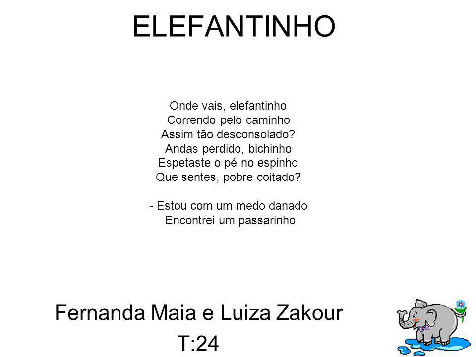 Fernanda Maia e Luiza Zakour T:24