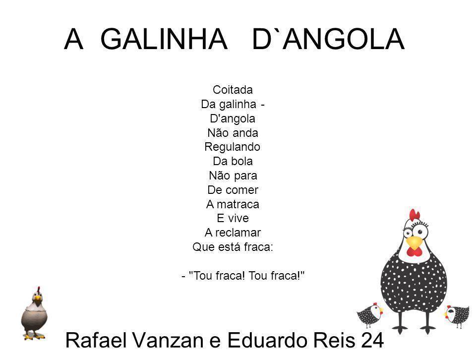 Rafael Vanzan e Eduardo Reis 24