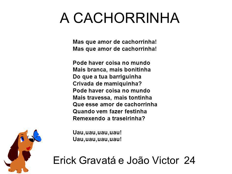 Erick Gravatá e João Victor 24