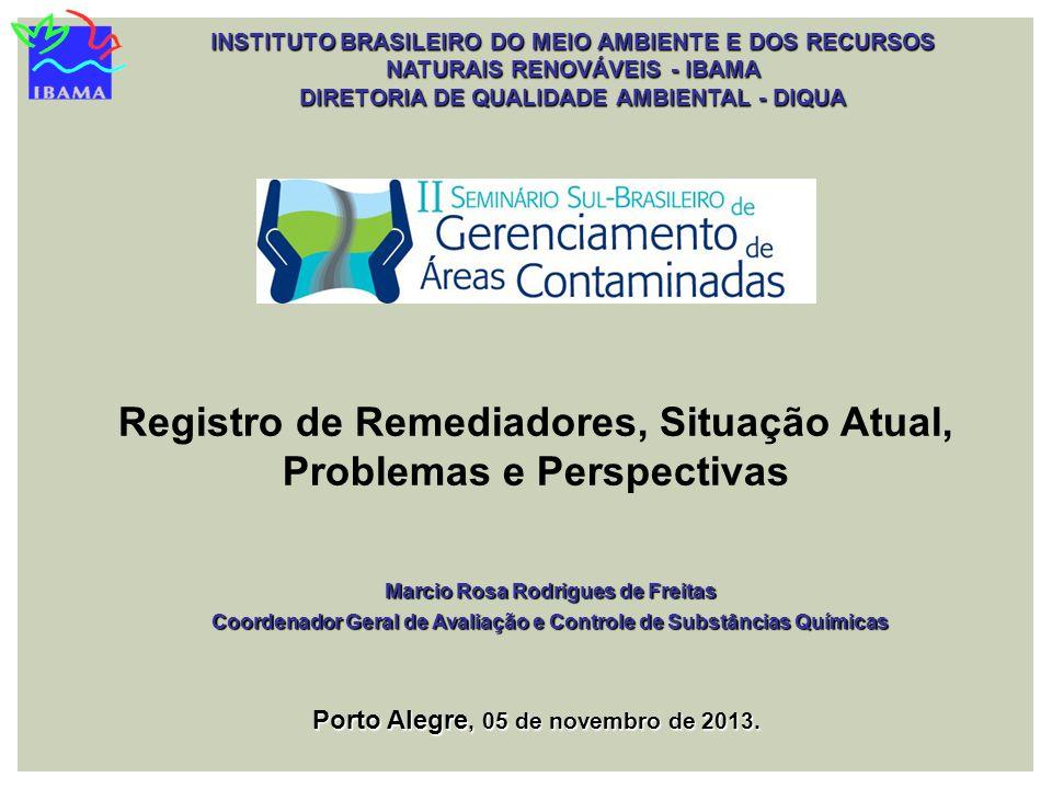 Registro de Remediadores, Situação Atual, Problemas e Perspectivas