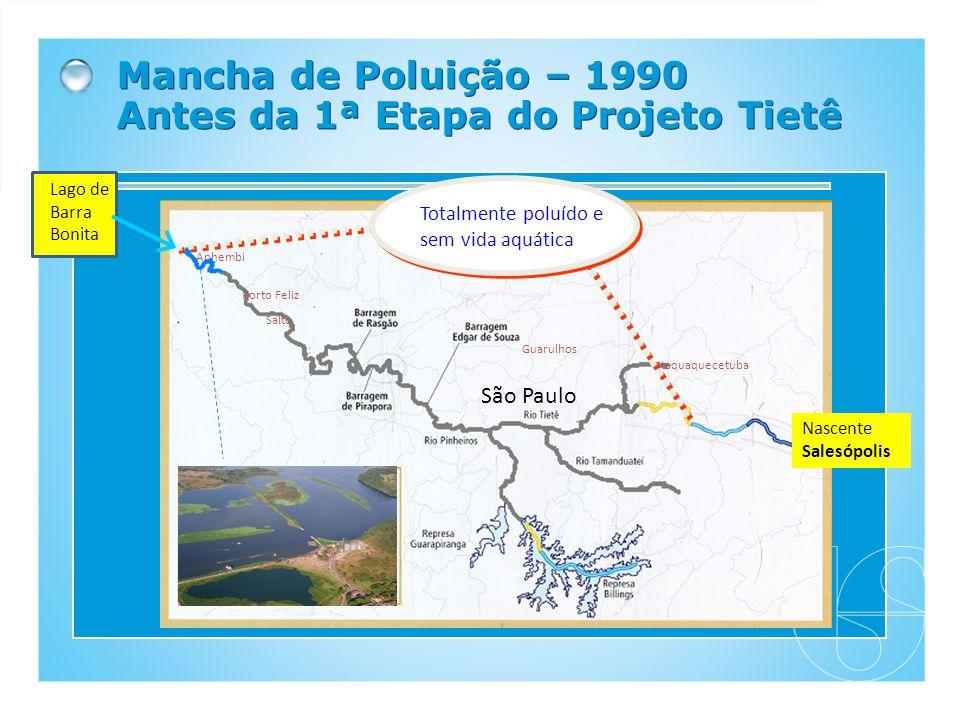 Mancha de Poluição – 1990 Antes da 1ª Etapa do Projeto Tietê