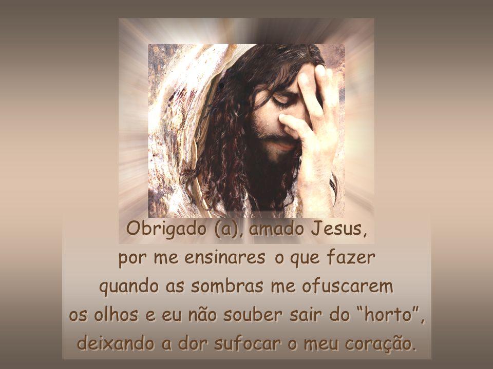 Obrigado (a), amado Jesus, por me ensinares o que fazer