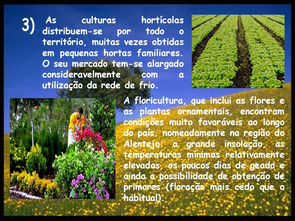 As culturas hortícolas distribuem-se por todo o território, muitas vezes obtidas em pequenas hortas familiares. O seu mercado tem-se alargado consideravelmente com a utilização da rede de frio.