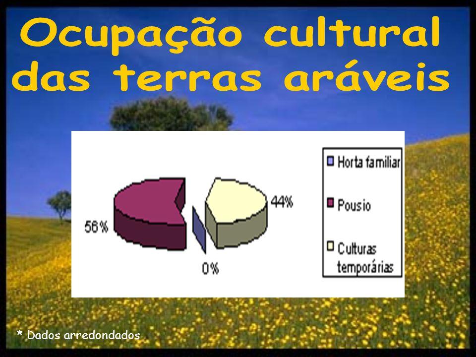 Ocupação cultural das terras aráveis
