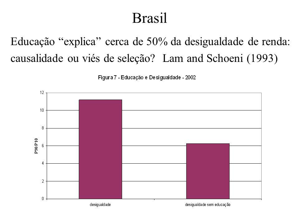 Brasil Educação explica cerca de 50% da desigualdade de renda: