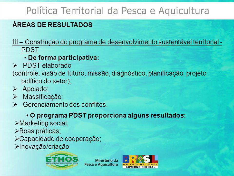 ÁREAS DE RESULTADOS III – Construção do programa de desenvolvimento sustentável territorial - PDST.
