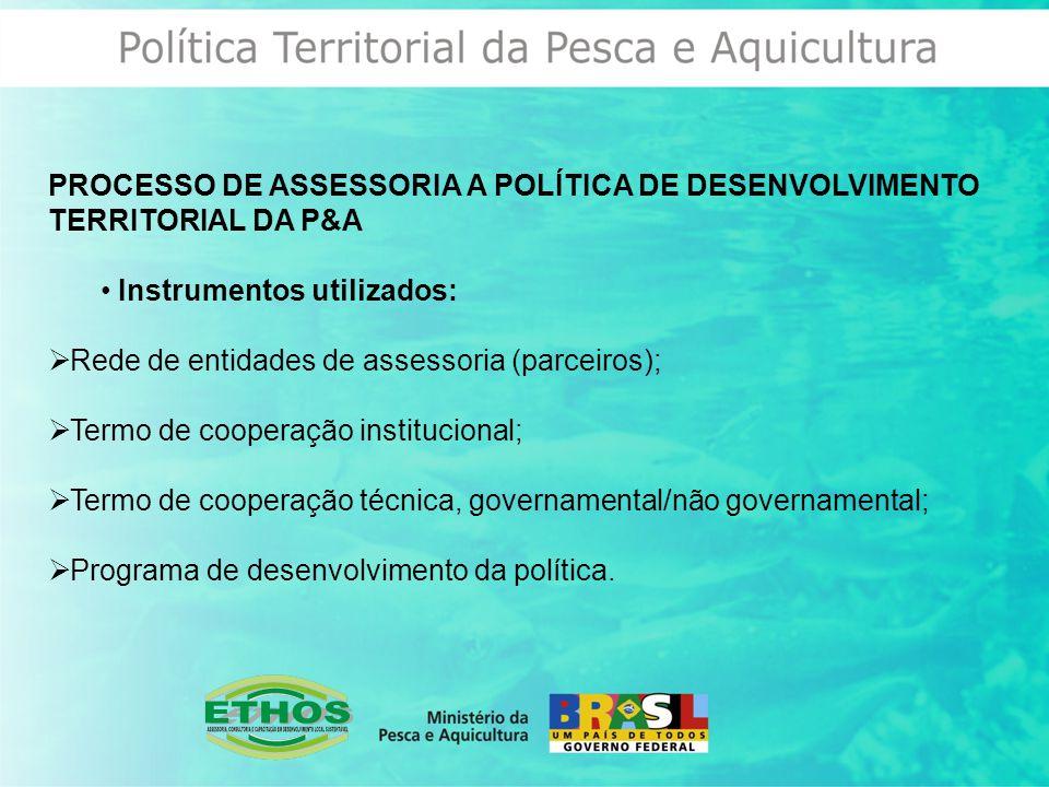 PROCESSO DE ASSESSORIA A POLÍTICA DE DESENVOLVIMENTO TERRITORIAL DA P&A