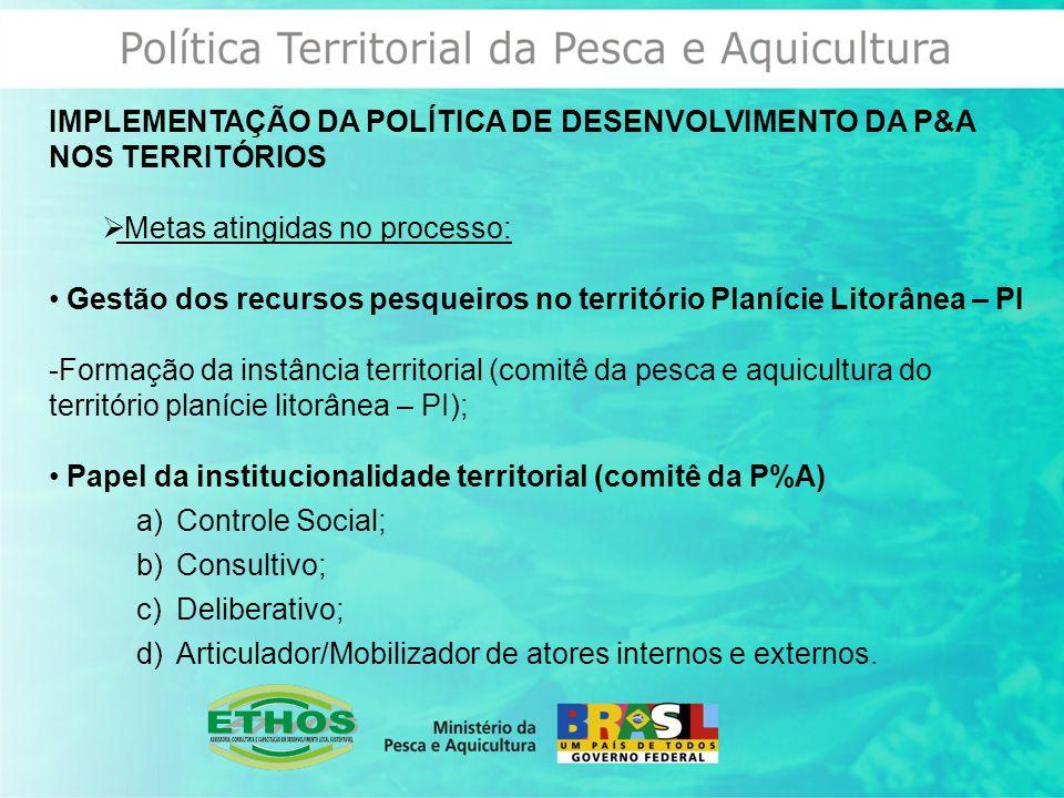 IMPLEMENTAÇÃO DA POLÍTICA DE DESENVOLVIMENTO DA P&A NOS TERRITÓRIOS