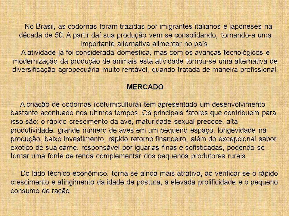 No Brasil, as codornas foram trazidas por imigrantes italianos e japoneses na década de 50. A partir daí sua produção vem se consolidando, tornando-a uma importante alternativa alimentar no país. A atividade já foi considerada doméstica, mas com os avanças tecnológicos e modernização da produção de animais esta atividade tornou-se uma alternativa de diversificação agropecuária muito rentável, quando tratada de maneira profissional.