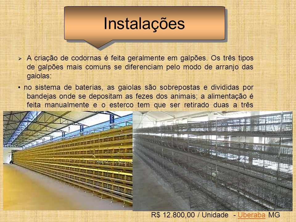 R$ 12.800,00 / Unidade - Uberaba MG