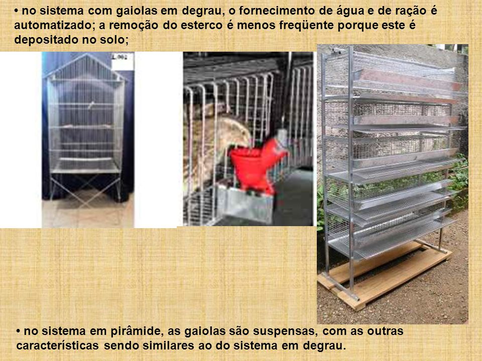 • no sistema com gaiolas em degrau, o fornecimento de água e de ração é automatizado; a remoção do esterco é menos freqüente porque este é depositado no solo;