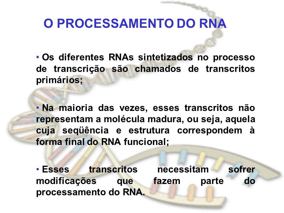 O PROCESSAMENTO DO RNA Os diferentes RNAs sintetizados no processo de transcrição são chamados de transcritos primários;