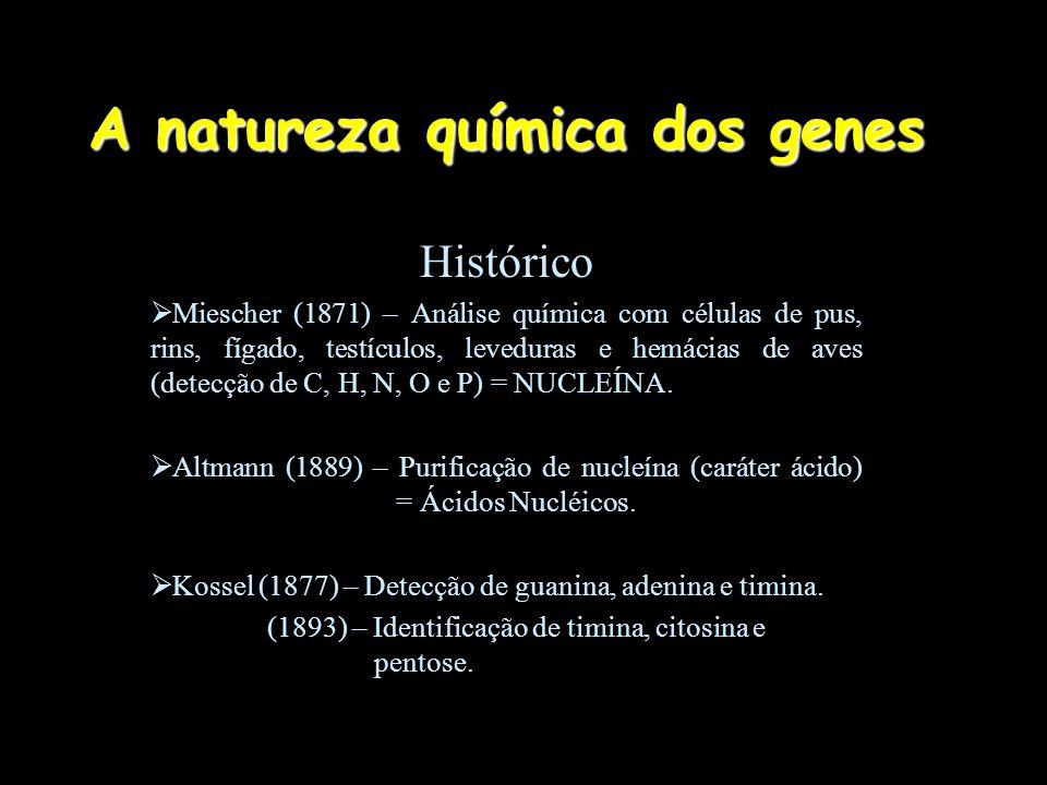 A natureza química dos genes