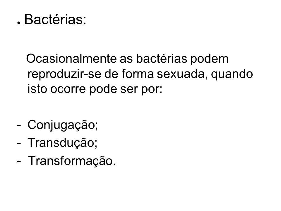 . Bactérias: Conjugação; Transdução; - Transformação.