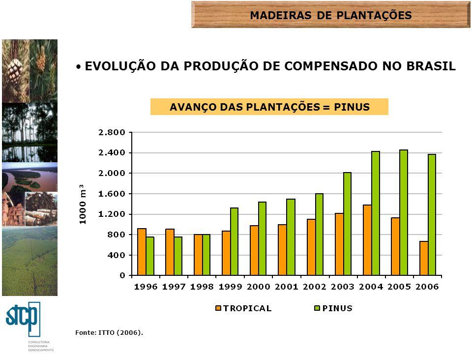 MADEIRAS DE PLANTAÇÕES AVANÇO DAS PLANTAÇÕES = PINUS