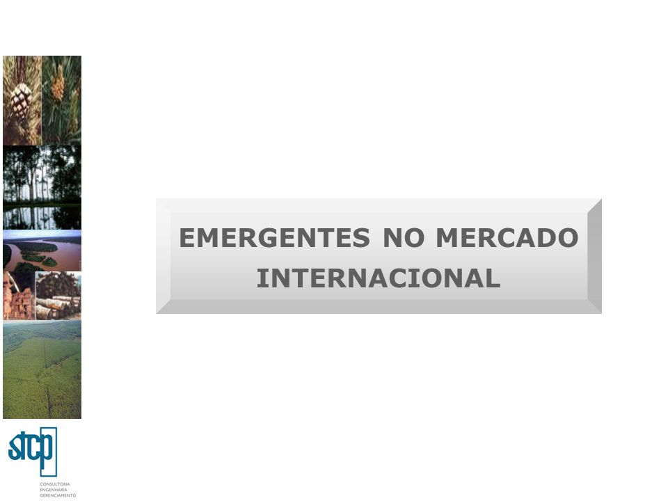 EMERGENTES NO MERCADO INTERNACIONAL